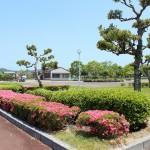 ふれあい広場(花壇3)